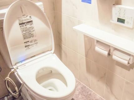 トイレの中で便座の開いた便器
